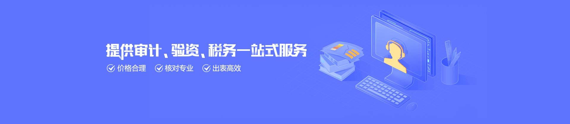 深圳公司审计报告