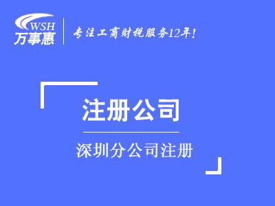分公司注册代办_分公司办理流程和条件_如何怎么注册分公司-深圳万事惠
