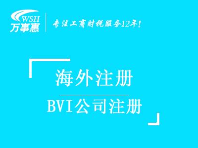 BVI公司注册好处_代办海外公司注册_BVI公司注册流程以及所需材料-深圳万事惠